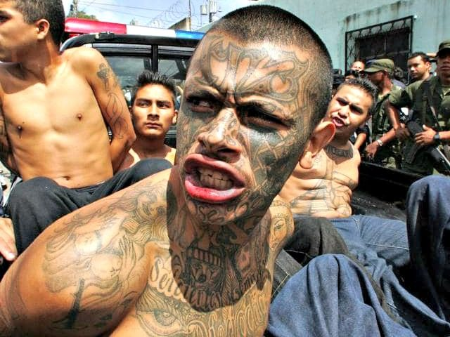Whose Side Are They On? Dems and Media Attack Trump For Calling MS-13 Gang Members Animals