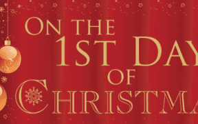 The Twelve Days Of Lockdown Christmas!